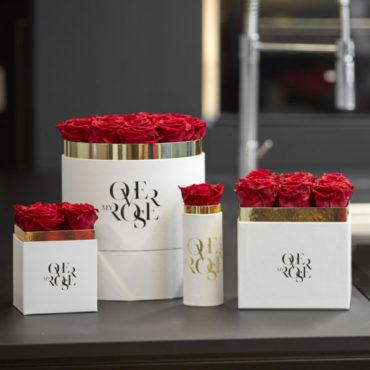 acquisto di rose STABILIZZATE ROSSE online