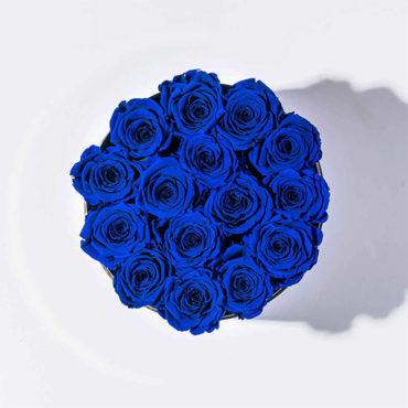 rose stabilizzate rose-blu