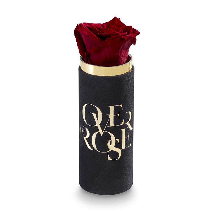 rosa stabilizzata Singola N rossa