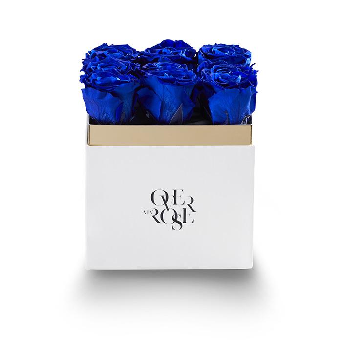 nine b_0011_QB grande blu