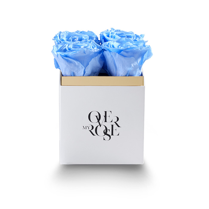 sushi b_0007_QB piccola azzurro