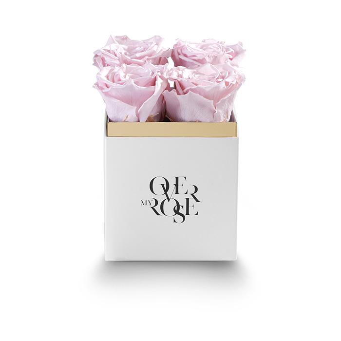sushi b_0011_QB piccola rosa