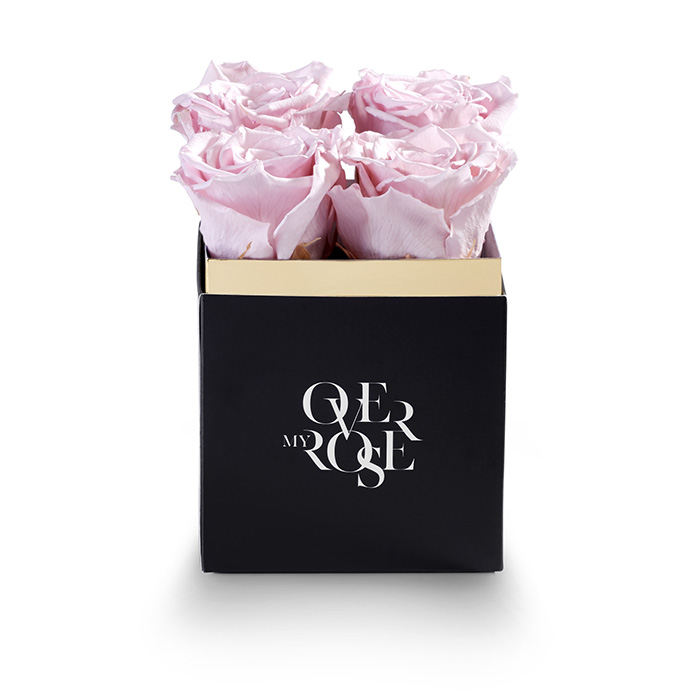 rose stabilizzate piccola rosa