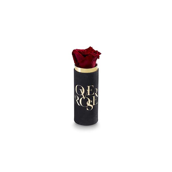 rosa stabilizzata JUST-DIMEN